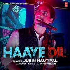 Haaye Dil