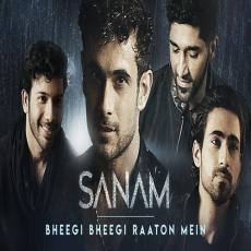 Bheegi Bheegi Raaton Mein - SANAM