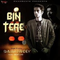 Bin Tere - Shivam Pandey