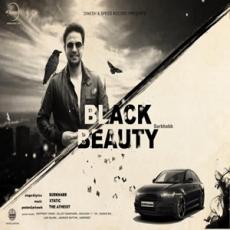 Black Beauty - Surkhabb