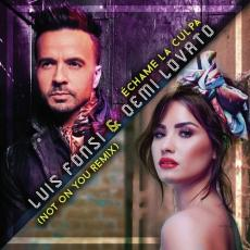 Echame La Culpa (Not On You Remix) - Luis Fonsi, Demi Lovato