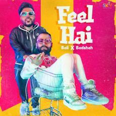 Feel Hai - Badshah