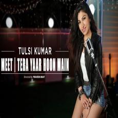 Meet Vs Tera Yaar Hoon Main - Tulsi Kumar