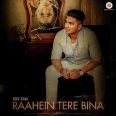 Raahein Tere Bina - Ashish Benjwal