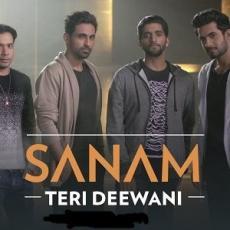 Teri Deewani - Sanam