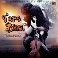 Tere Bina - Altaaf Sayyed