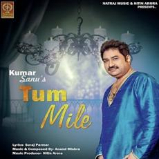 Tum Mile - Kumar Sanu - Mp3 Song