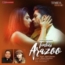 Tumhari Arazoo - Mohit Chauhan